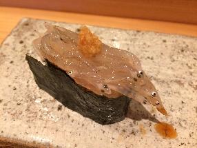 Japanese icefish (Shirauo)