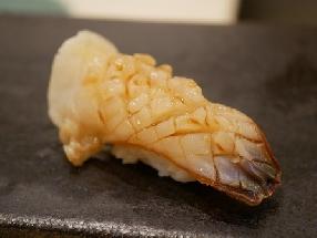 Mirugai clam (Mirugai)