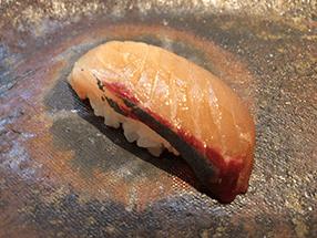 japanese-conger